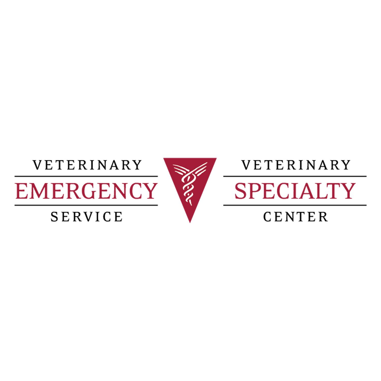 VES VSC Logo